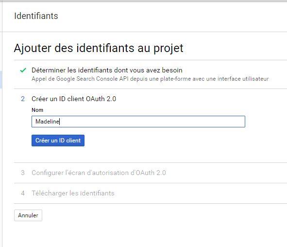 Utiliser l'API de Google Search Console avec Oacurl (lignes de